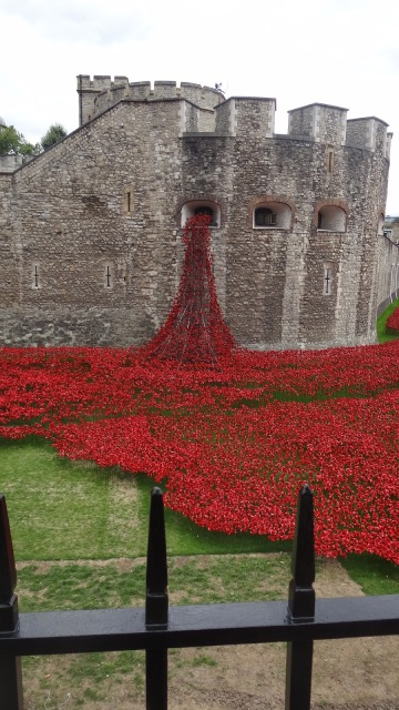 Tower London Poppies Remembrance